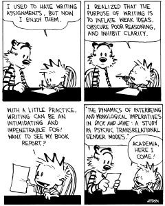 Calvin and Hobbes - the Purpose of Writing
